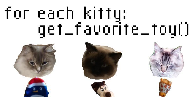 photos/kitties-and-toys.jpg